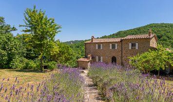 Farm Ranch in Lisciano Niccone, Umbria, Italy 1