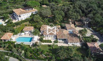 House in Saint-Tropez, France 1