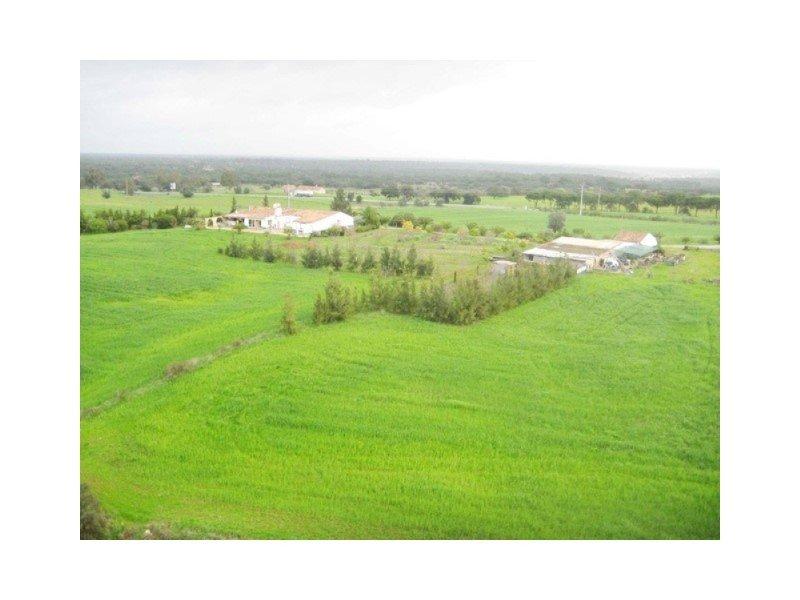 Farm Ranch in Azinheira dos Barros e São Mamede do Sádão, Setubal, Portugal 1