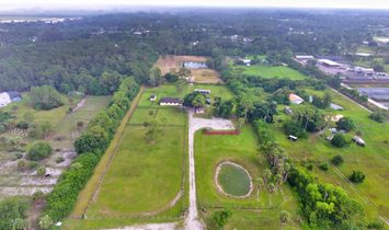Farm Ranch in Loxahatchee, Florida, United States 1