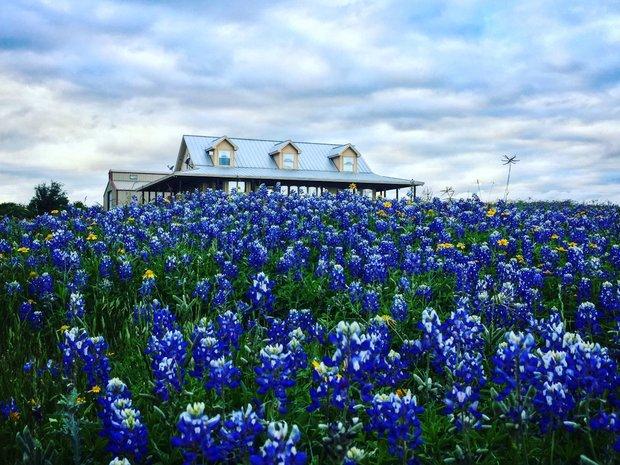 House in Horseshoe Bay, Texas, United States 1