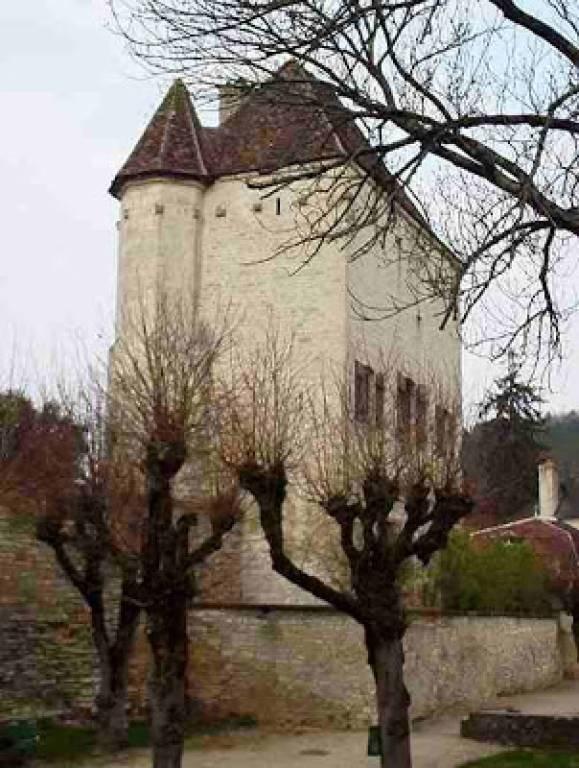 Castle in Cravant, Bourgogne-Franche-Comté, France 1