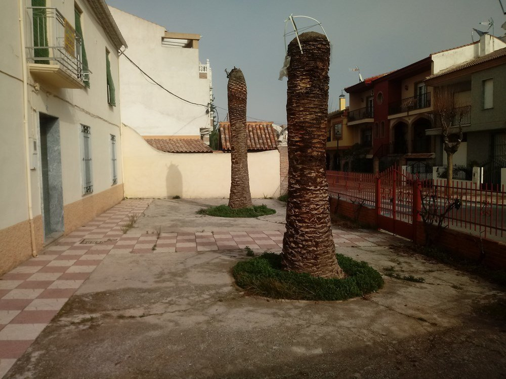 Villa in Churriana de la Vega, Andalusia, Spain 1