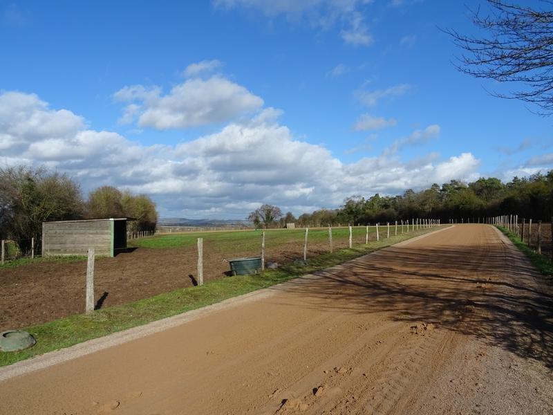 Farm Ranch in Argentan, Normandy, France 1