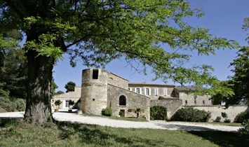 House in Tavel, Occitanie, France 1