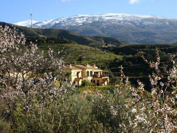 Finca in Andalusia, Spain 1