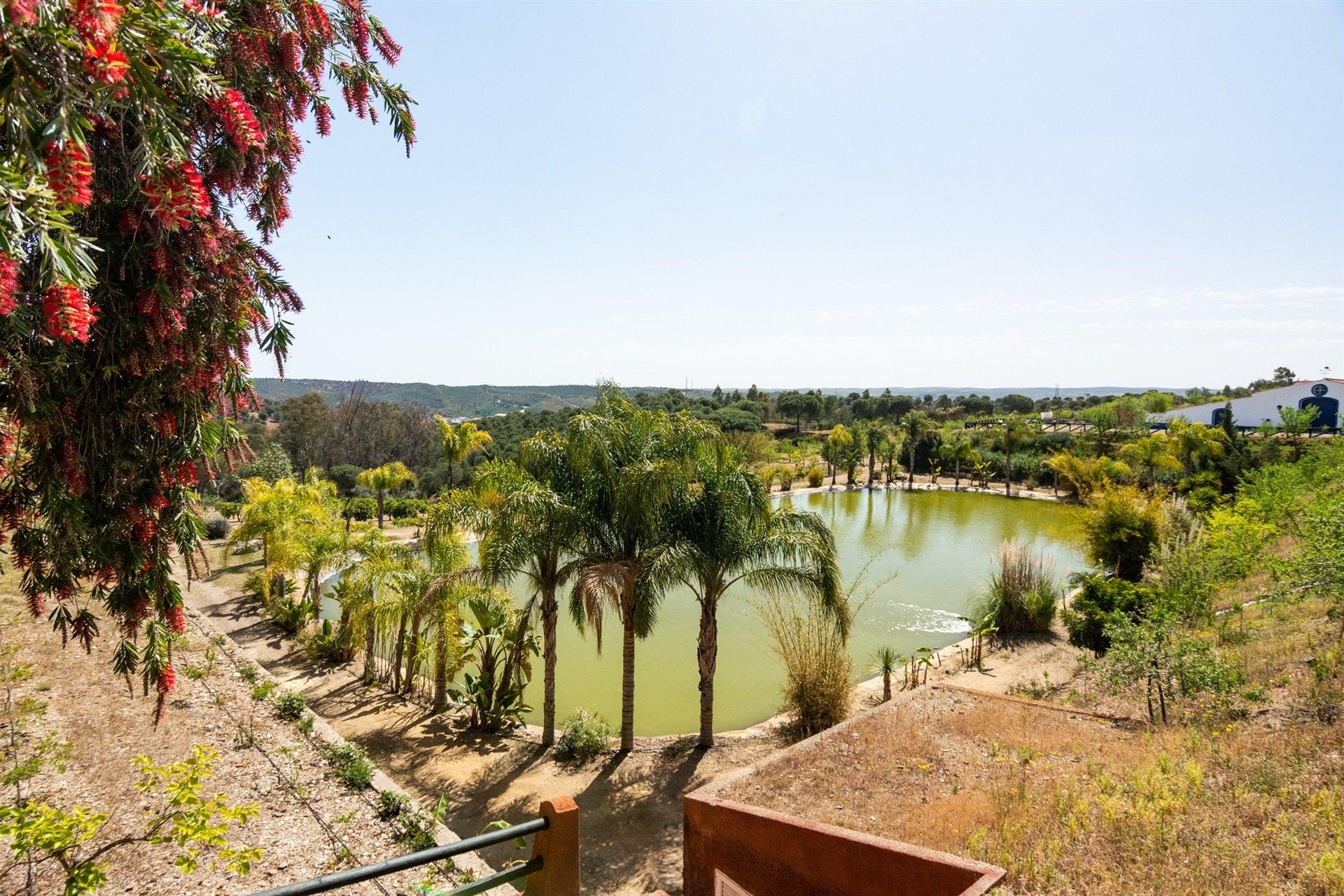 Mértola, Beja District, Portugal 1