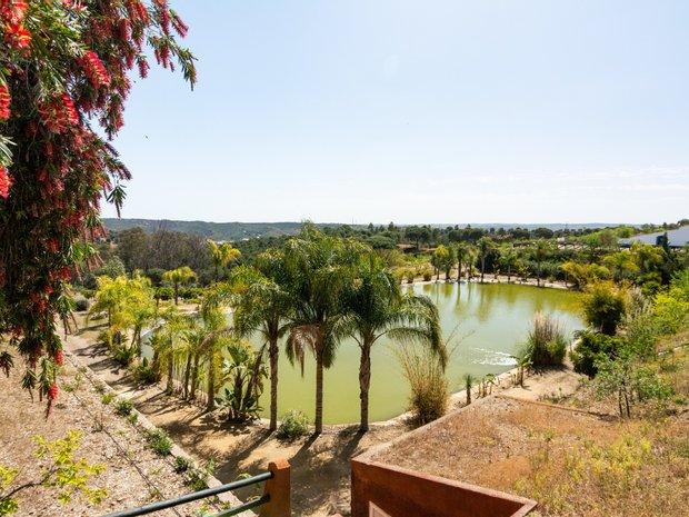 Farm Ranch in Mértola, Beja District, Portugal 1