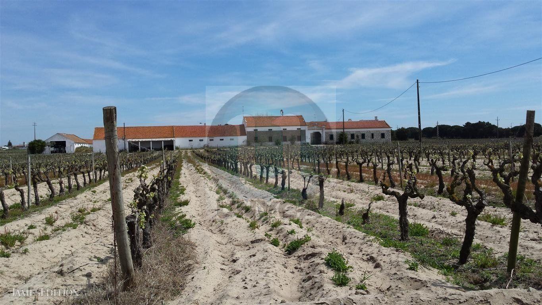 Farm Ranch in Setubal, Portugal 1