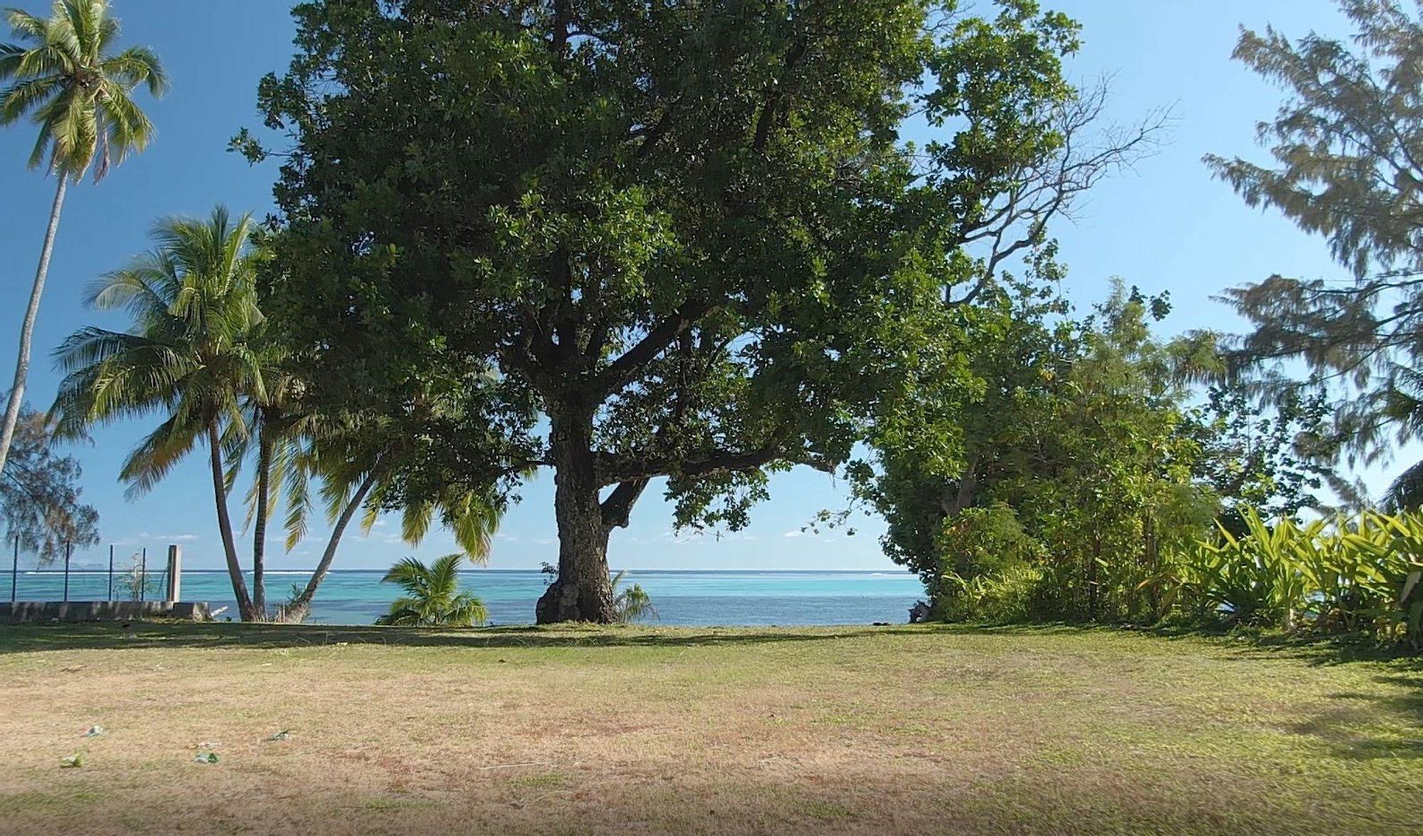 Land in Paopao, Windward Islands, French Polynesia 1