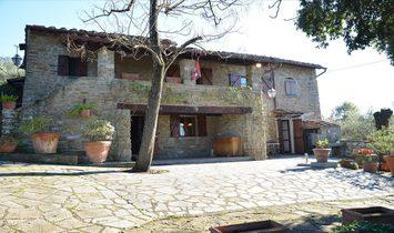 Altro in Toscana, Italia 1