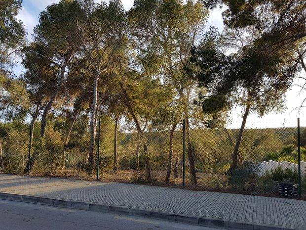 Land in Calvià, Balearic Islands, Spain 1