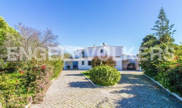 Haus in Lagoa, Portugal 1