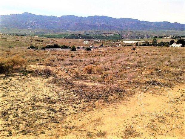 Land in Los Gallardos, Andalusia, Spain 1