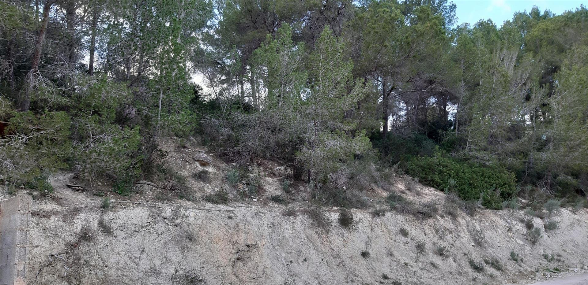 Land in Cala Fornells, Balearic Islands, Spain 1