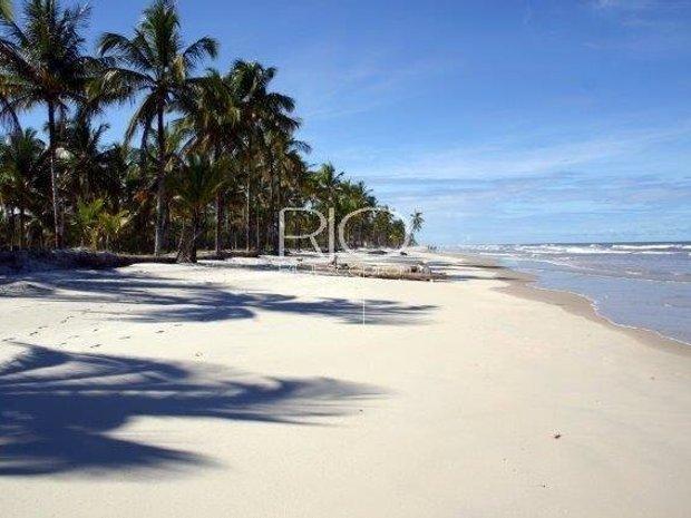 Land in State of Bahia, Brazil 1