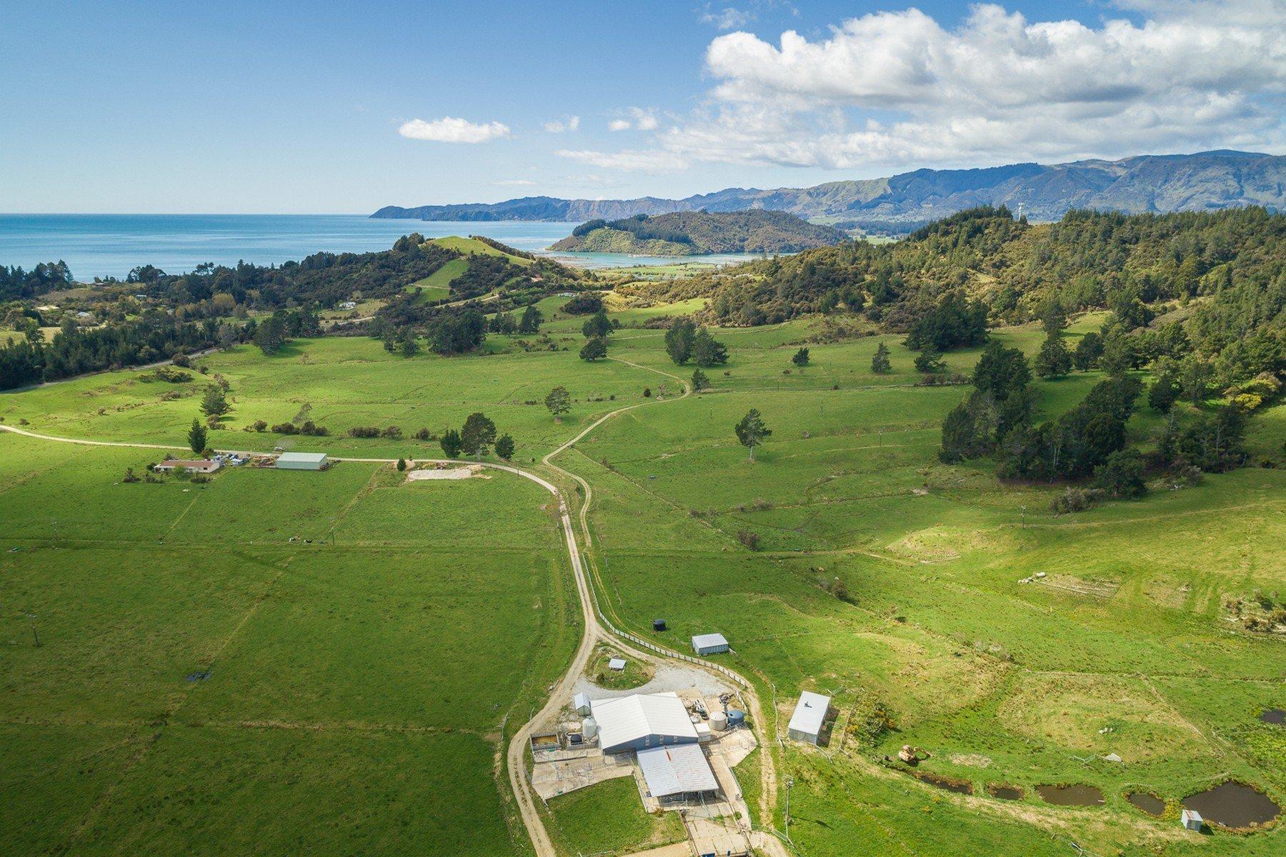 Puramahoi, Tasman, New Zealand 1
