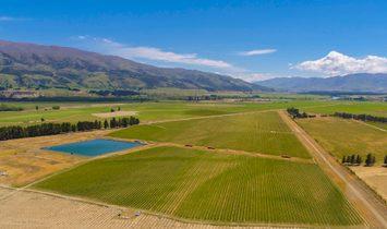 Bendigo, Otago, New Zealand