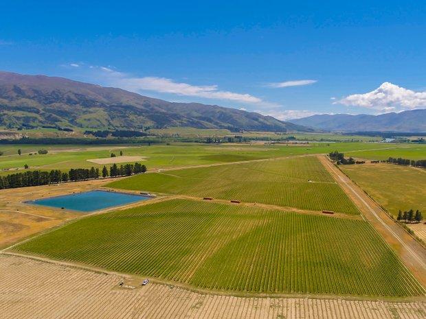 Bendigo, Otago, New Zealand 1
