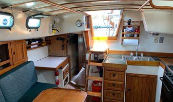 Cabo Rico Tiburon