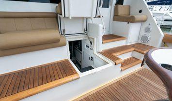 Viking Enclosed bridge/Skybridge
