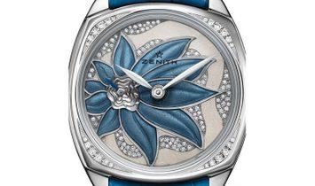 Zenith Star (UN-C) 45.1972.681/36.C757