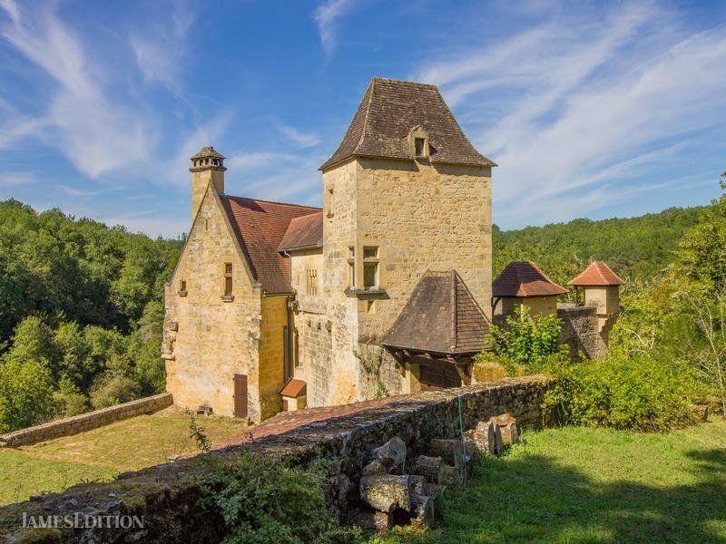 Chateau in Saint-Cyprien, Nouvelle-Aquitaine, France 1