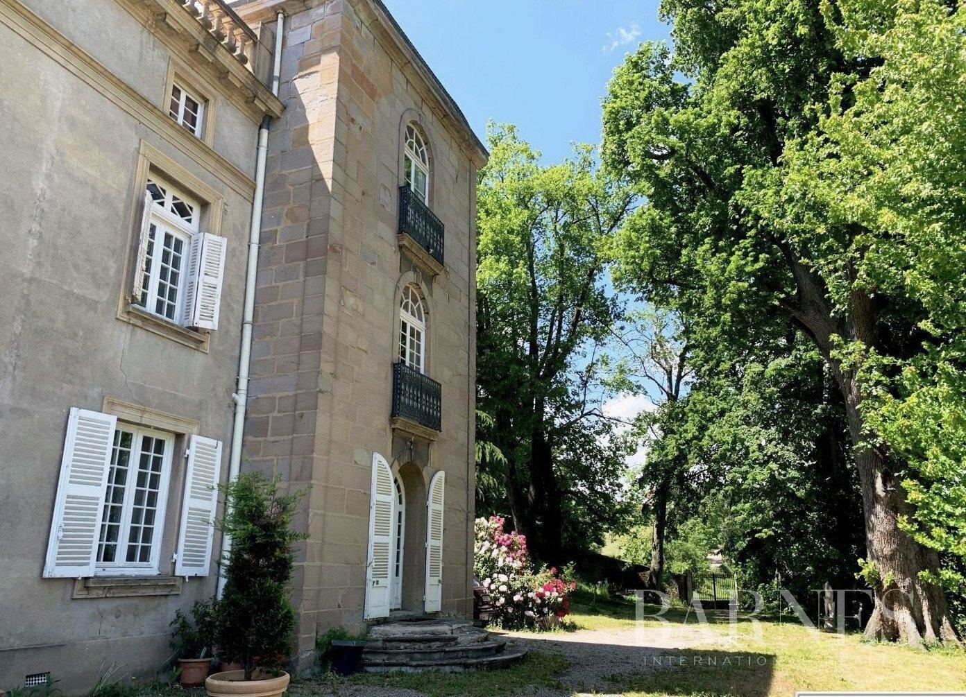 Castle in La Ricamarie, Auvergne-Rhône-Alpes, France 1