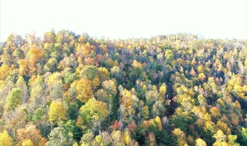 Land in Vanceburg, Kentucky, United States 1