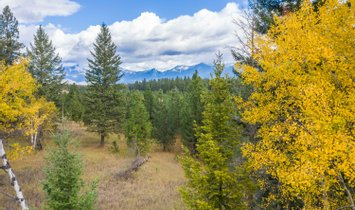 Terreno en Bigfork, Montana, Estados Unidos 1