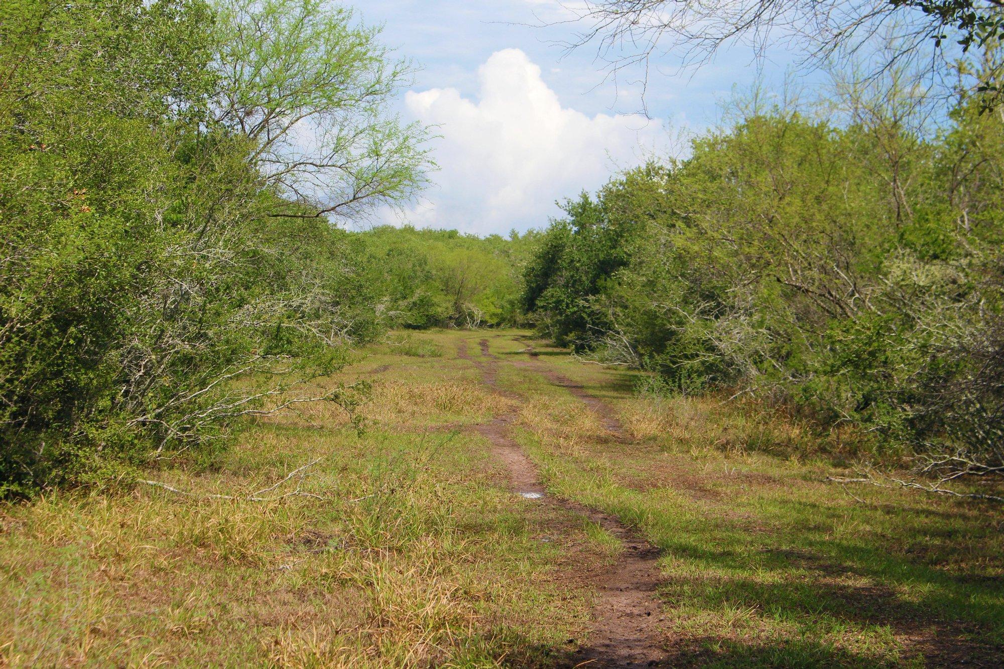 Farm Ranch in Goliad, Texas, United States 1
