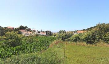 House in Vila Nova de Gaia, Porto, Portugal 1