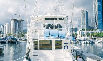 Viking 57 Convertible