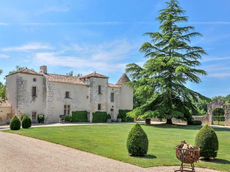 Chateau in Chadurie, Nouvelle-Aquitaine, France 1