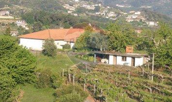 Andere in Santa Marinha do Zêzere, Porto, Portugal 1