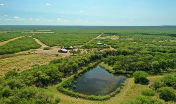 Farm Ranch in Laredo, Texas, United States 1