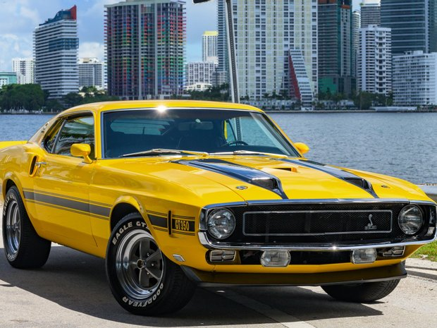 FORD SHELBY GT350 (11196282)