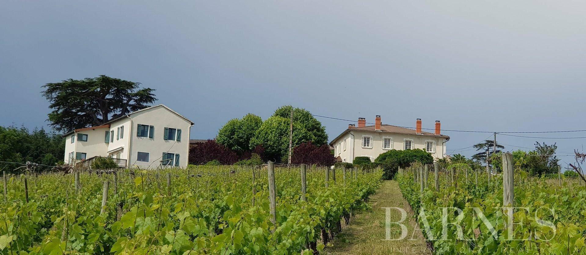 House in Renaison, Auvergne-Rhône-Alpes, France 1