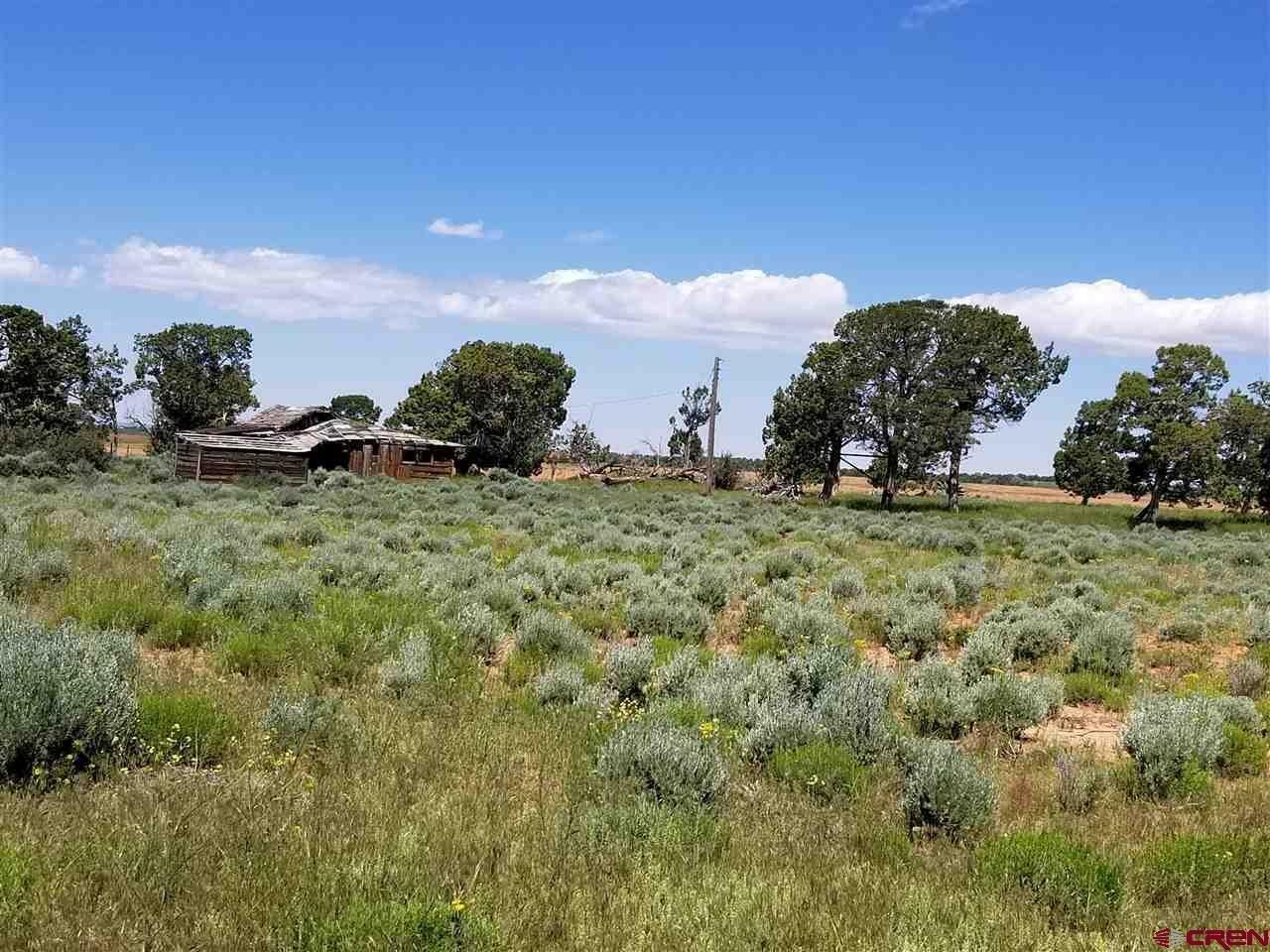 Land in Dove Creek, Colorado, United States 1 - 11227443