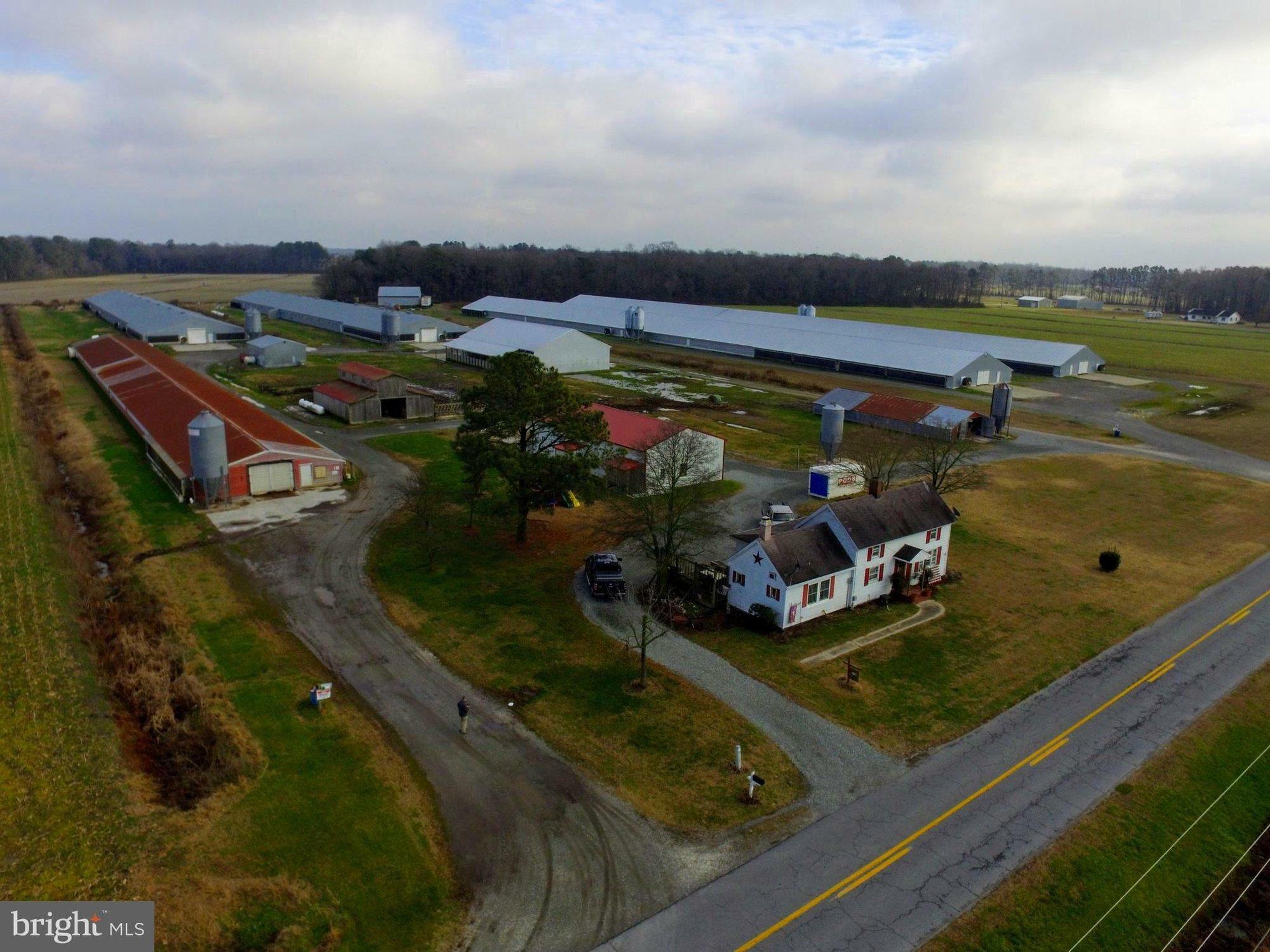 Farm Ranch in Millsboro, Delaware, United States 1 - 11248579