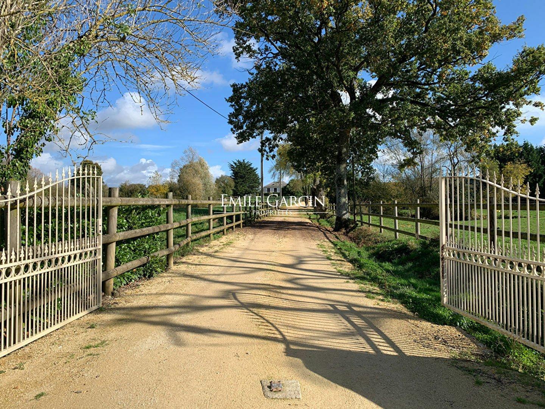 Farm Ranch in Saumur, Pays de la Loire, France 1