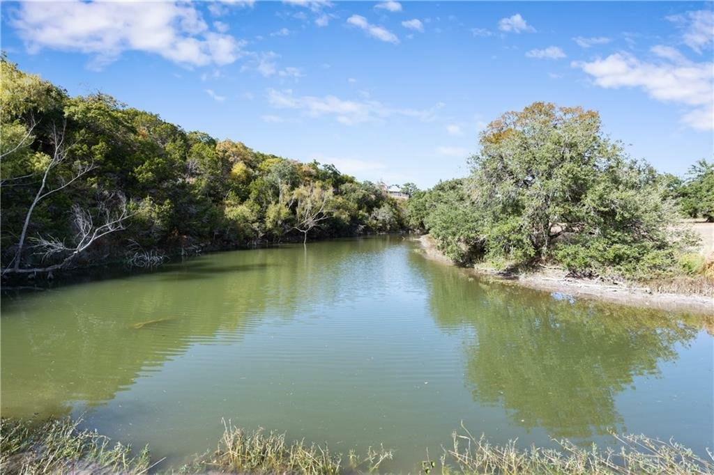 Farm Ranch in Dripping Springs, Texas, United States 1