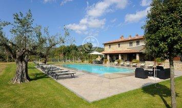 Estate in Tuoro sul Trasimeno, Umbria, Italy 1