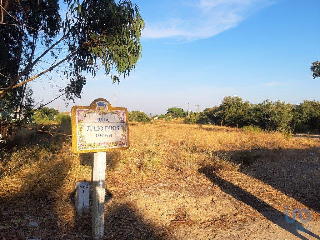 Land in Palmela, Setubal, Portugal 1