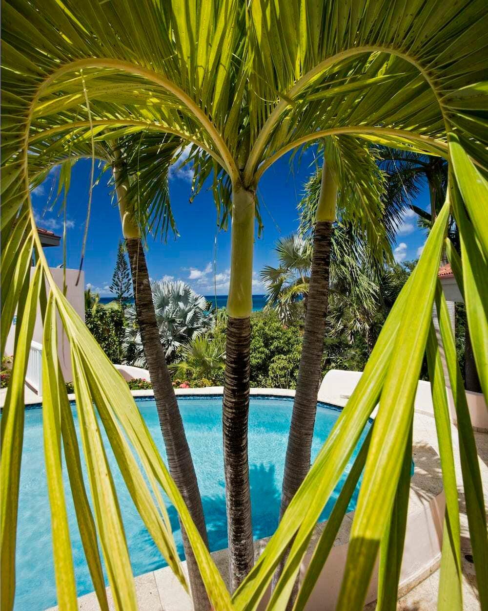 House in Virgin Gorda, British Virgin Islands 1 - 11188640