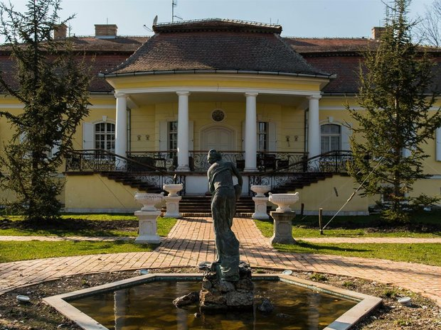House in Padej, Vojvodina, Serbia 1