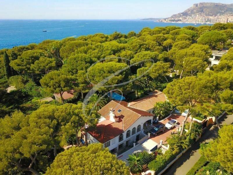 Villa in Roquebrune-Cap-Martin, Provence-Alpes-Côte d'Azur, France 1 - 11278835