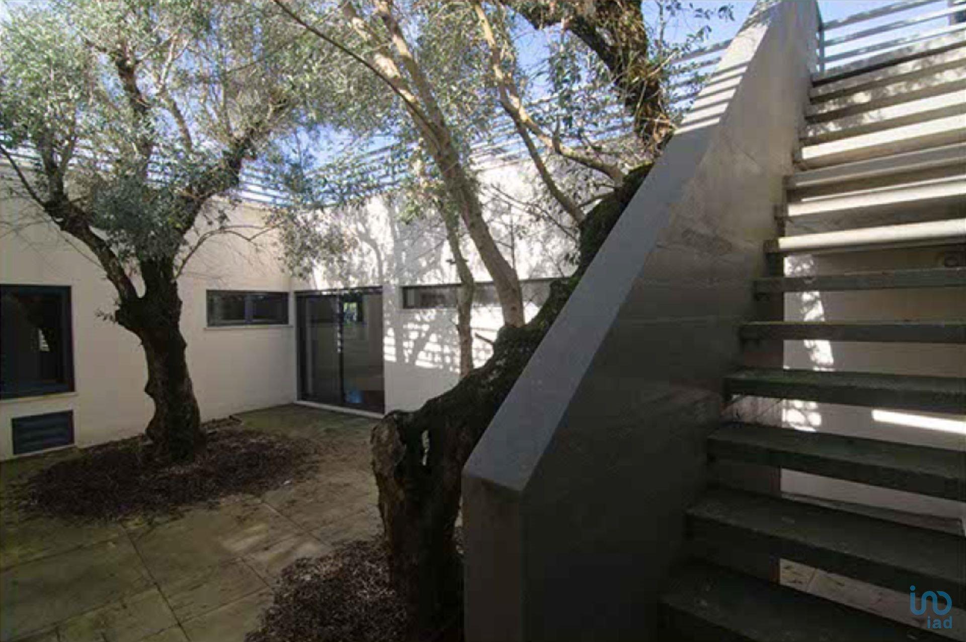 House in Alcobaça, Leiria District, Portugal 1 - 11061369