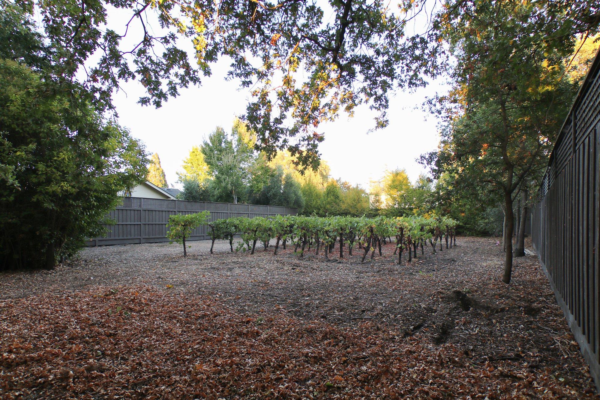 Land in Sonoma, California, United States 1