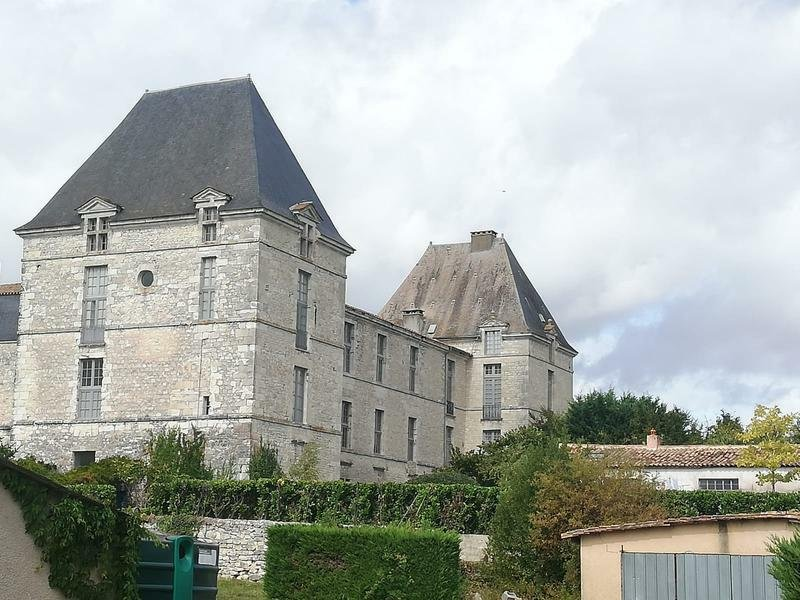 Chateau in Saussignac, Nouvelle-Aquitaine, France 1